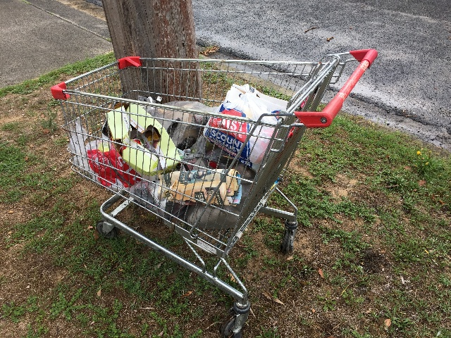 Trolley left on the street in Umina Beach