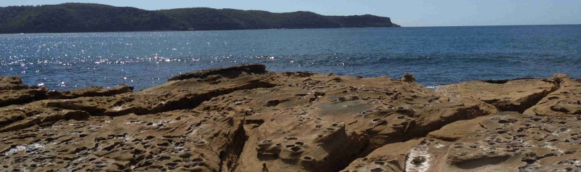 Rockpool at Umina Beach